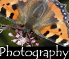 Link to Photography Page